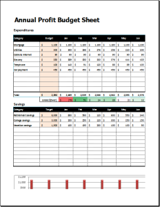 annual profit budget sheet