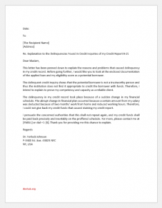 Delinquent Credit Issue Explanation Letter